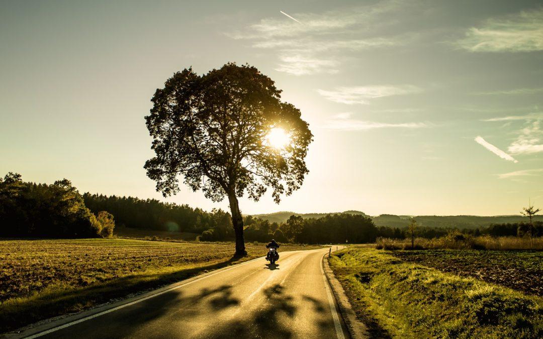 Tages- und Zweitagesfahrten