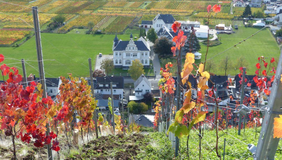 Wander- und Genuss-Tour – Herbst an der Ahr. 21.- 25. Sept. 2020 (Mi.- So.)